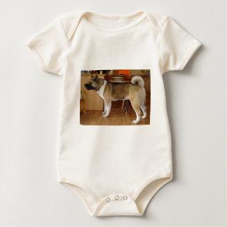 Akita Body Para Bebé