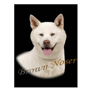 Akita Brown Noser Postal