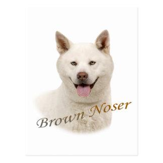 Akita Brown Noser Postales