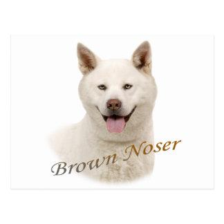 Akita Brown Noser Tarjetas Postales