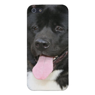 Akita Cover For iPhone SE/5/5s