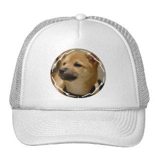 Akita Dog Basebal Hat