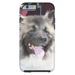 Akita dog iPhone 6 case