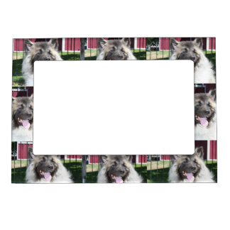 Akita Dog Picture Frame Magnets