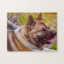 Akita Dogs. Jigsaw Puzzle