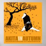 """Akita en el otoño (24"""" x 26"""") póster"""