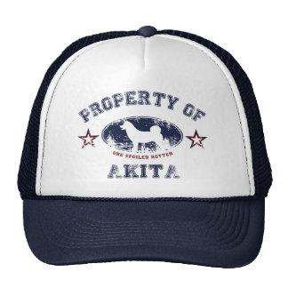Akita Gorras