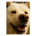 Akita Greeting Card