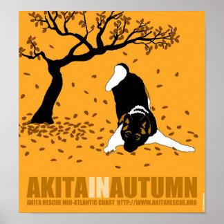 """Akita in Autumn (12"""" x 13"""") Posters"""