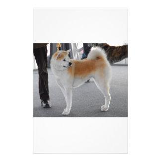 Akita Inu Dog In A Dog Show Stationery