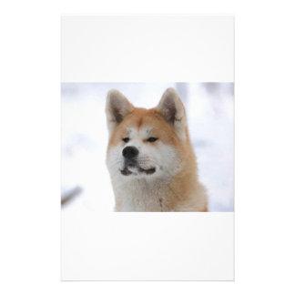 Akita Inu Dog Looking Serious Stationery