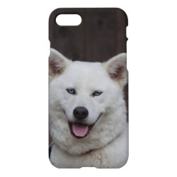 iPhone 7 Case with Akita Phone Cases design