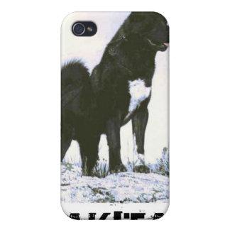 Akita iphone 4 Case