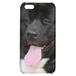 Case Savvy Matte Finish iPhone 5C Case with Akita Phone Cases design