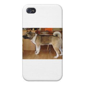 Akita iPhone 4/4S Case