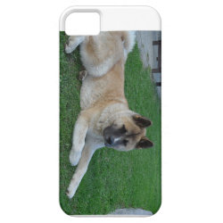 akita laying.png iPhone SE/5/5s case