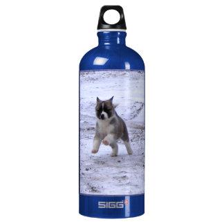 Akita Pup Aluminum Water Bottle