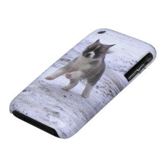 Akita Pup iPhone 3 Cover