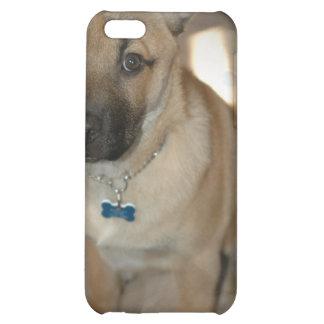 Akita Puppy iPhone Case Case For iPhone 5C