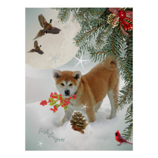 AKITA puppy playing in snow Poster