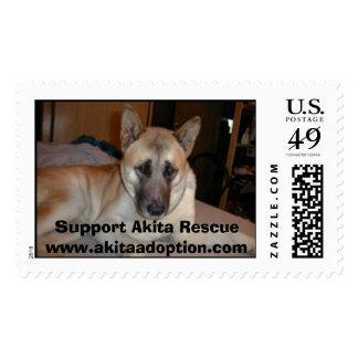 Akita Rescue, Support Akita Rescuewww.akitaadop... Postage