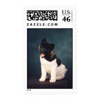 akitas stamps