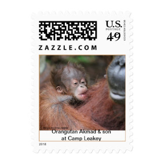 Akmad with New Orangutan Baby Postage