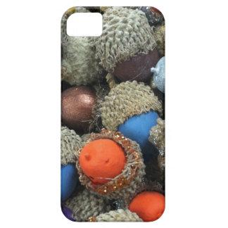Akorns 1.JPG iPhone 5 Carcasas