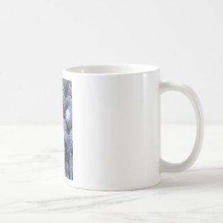 Akorns 2.JPG Classic White Coffee Mug