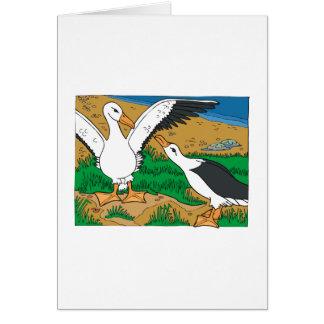 Al Ally Albatross Cards