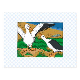 Al & Ally Albatross Postcard
