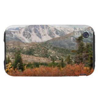 AL Autumn Layers Tough iPhone 3 Case