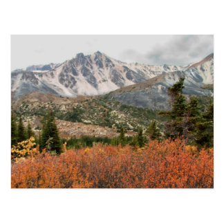 AL Autumn Layers Post Card