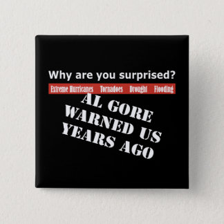 Al Gore Warned Us Pinback Button