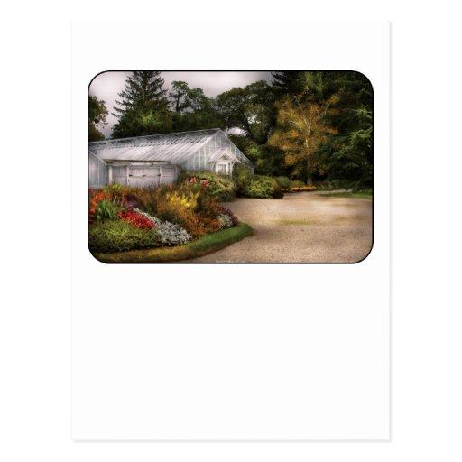 Al invernadero tarjeta postal