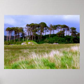 """""""Al oeste de los árboles de Irlanda """" Póster"""