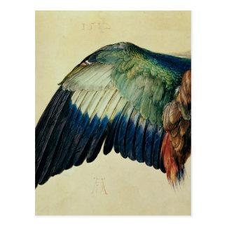 Ala de un rodillo azul, 1512 tarjetas postales