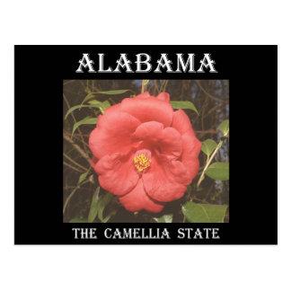 Alabama Camellia (Red) Postcard