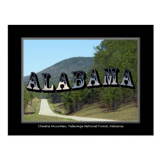 Alabama Cheaha Mountain Talladega Forest Post Card