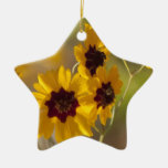 Alabama Coreopsis tinctoria Wildflowers Christmas Tree Ornament