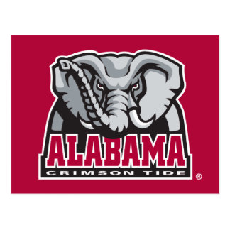 Alabama Crimson Tide Big Al Postcard