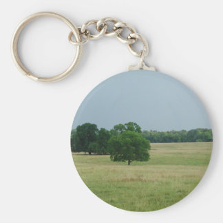 Alabama Landscape Key Chain