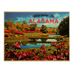 Alabama Mirror Lake Postcard