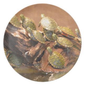 Alabama Red Bellied Turtle 2 (Alabama) Dinner Plate