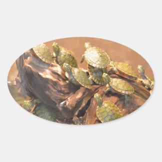 Alabama Red Bellied Turtle 2 (Alabama) Oval Sticker