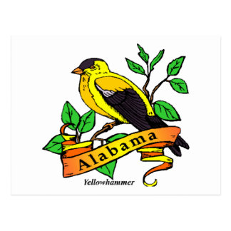 Alabama State Bird Postcard