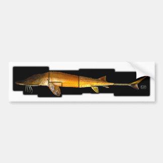 Alabama Sturgeon - Scaphirhynchus suttkusi Car Bumper Sticker