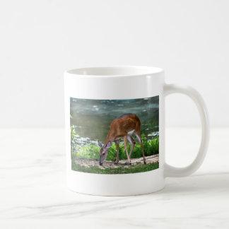 Alabama Whitetail Deer Coffee Mug