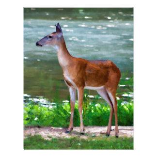 Alabama Whitetail Deer Doe Letterhead