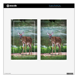 Alabama Whitetail Deer Female Kindle Fire Skins